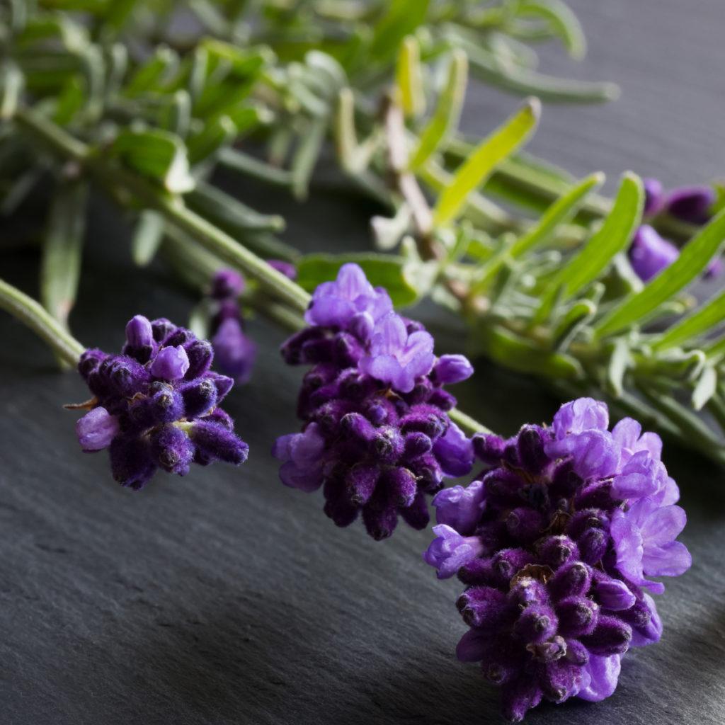 Ianthis Cica Concentré soin vegetal peau Remèdes et Santé Globale